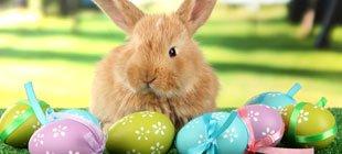 La Pascua: los niños y las creencias